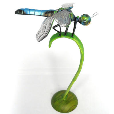Perched Dragonfly