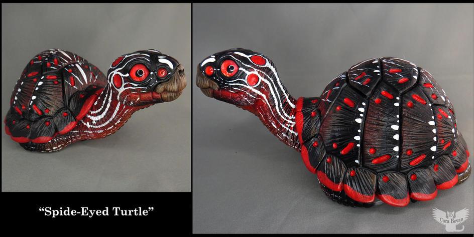 Spider-Eyed turtle
