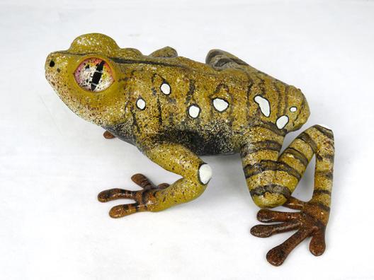Frog #160 - Map Treefrog