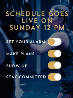 SCHEDULE GOES LIVE