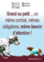 Projet_PetitGrandChien FINAL F.jpg