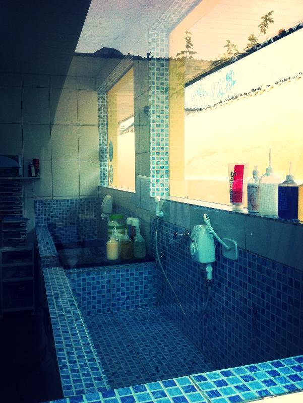 Sala de banho e tosa