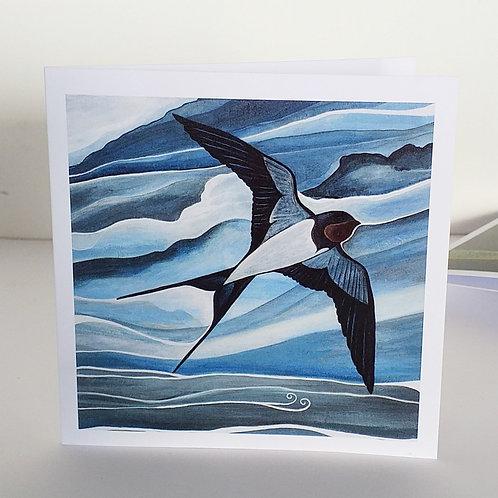 Swallow art greeting card UK Northern Ireland swallows of Strangford Lough  bird lover