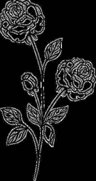 vintage-flowers-rose-3_edited.png