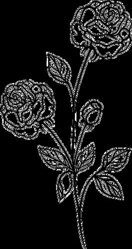 vintage-flowers-rose-3_edited_edited.png
