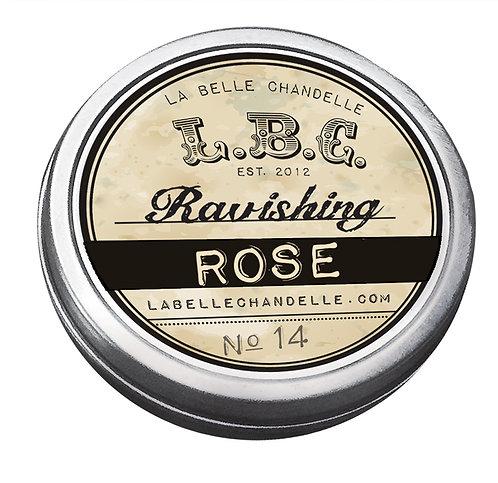 Ravishing Rose