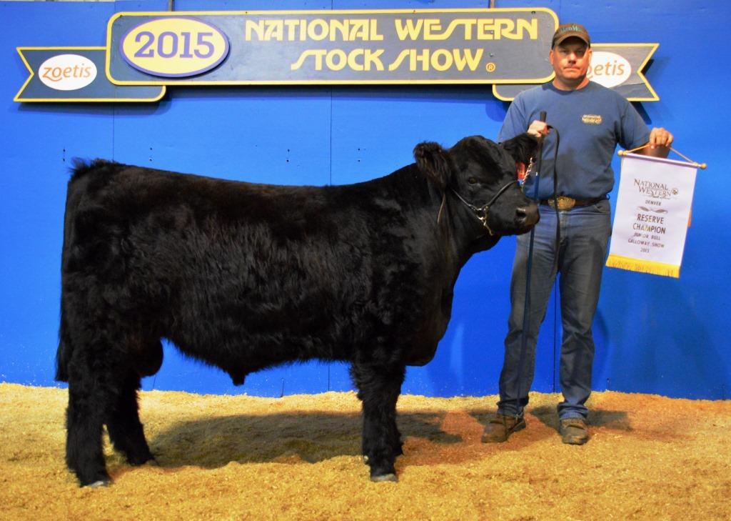 res jr bull calf