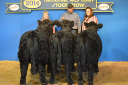 2014NWSS-Get-of-Sire