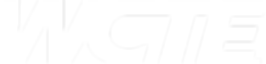 WCTE Logo Wht.png