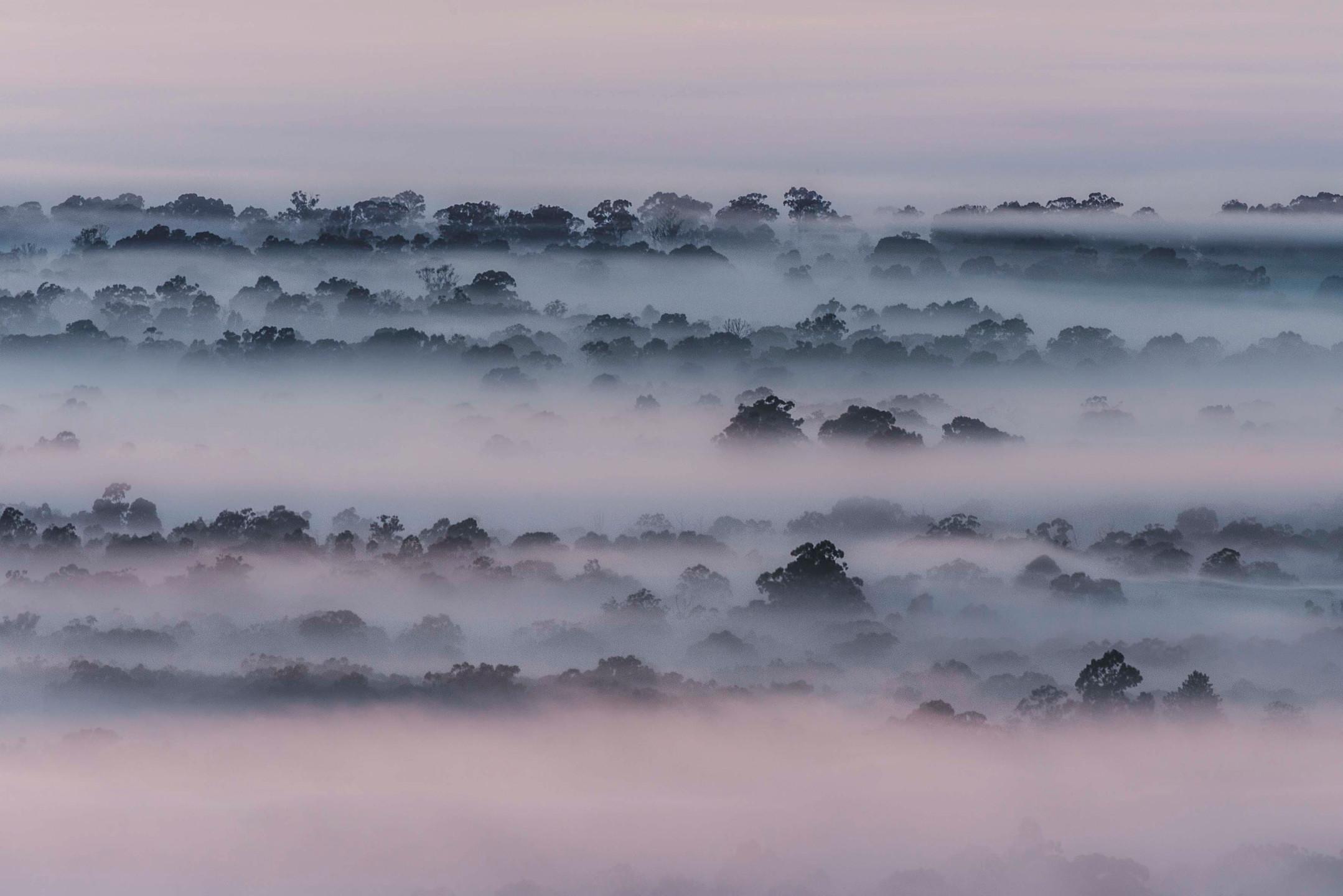 Morning mist over Yarramundi from Yellowmundi (Hawkesbury Heights) Lookout.