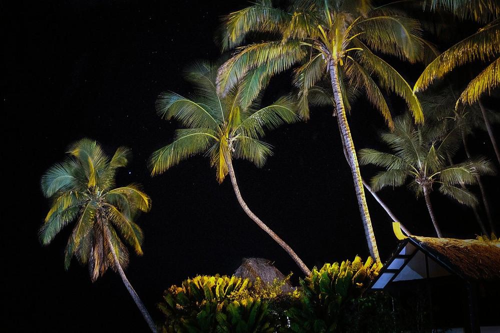 Fiji 13
