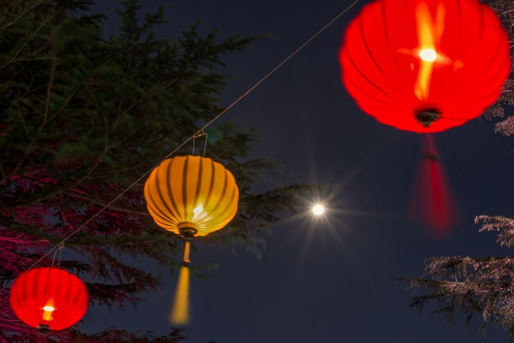 Moon Festival 20