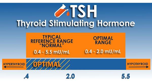 tsh test.jpg