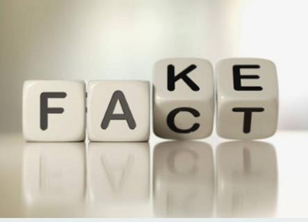 fake-fact.PNG