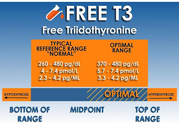 free t3 test.jpg