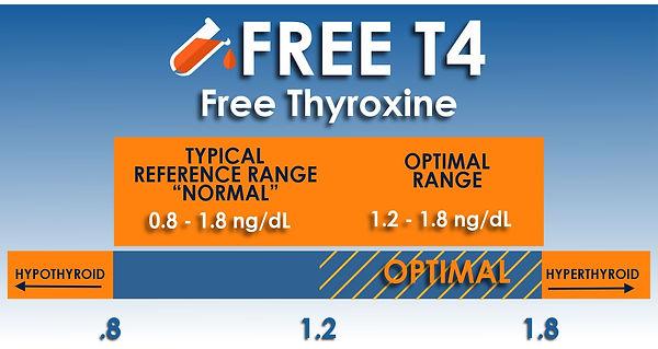 free t4 test.jpg
