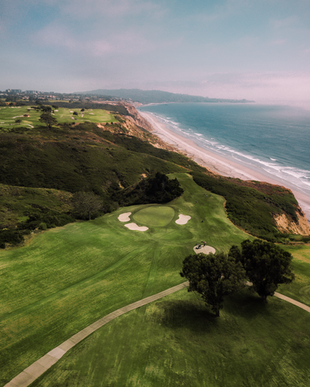 torrey pines-Recovered.png