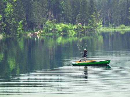 descontaminación de lagos y lagunas