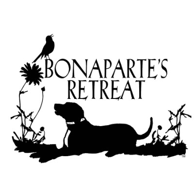 Bonaparte's Retreat