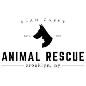 Sean Casey Animal Rescue