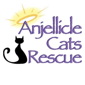 Anjellicle Cats Rescue