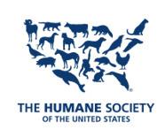 Broadway Barks Celebrates National Animal Shelter Appreciation Week November 5–11, 2017