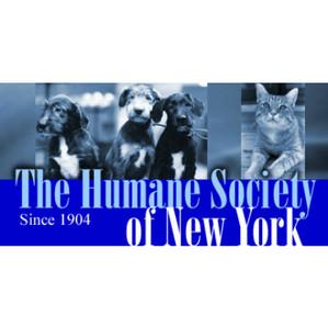 The Humane Society of New York