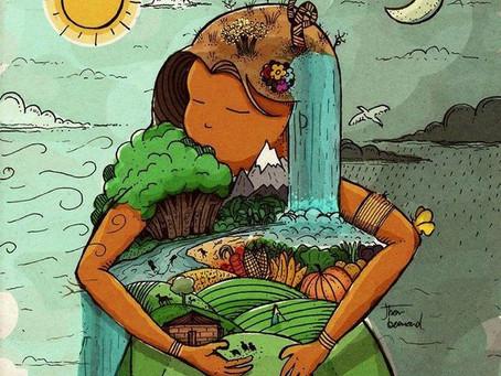 Ecofeminismo(s): gênero e meio ambiente sob uma mesma perspectiva