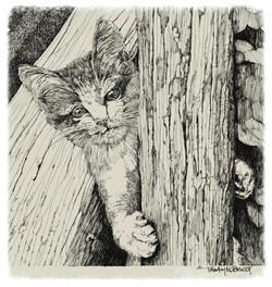 Kitty Holding on Tight