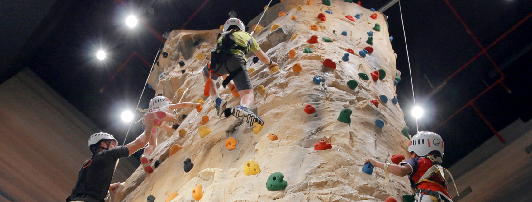 Climbing Pinnacle & Climbing Wall