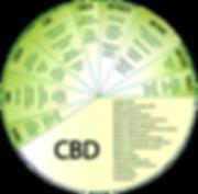 cbd-chart.png