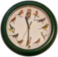 Lintukello (vihreä).jpg