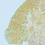 Thumbnail: Fiordland Topo Map