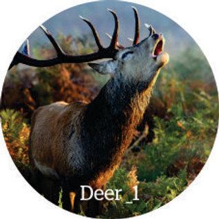 Wall Dots (Deer)