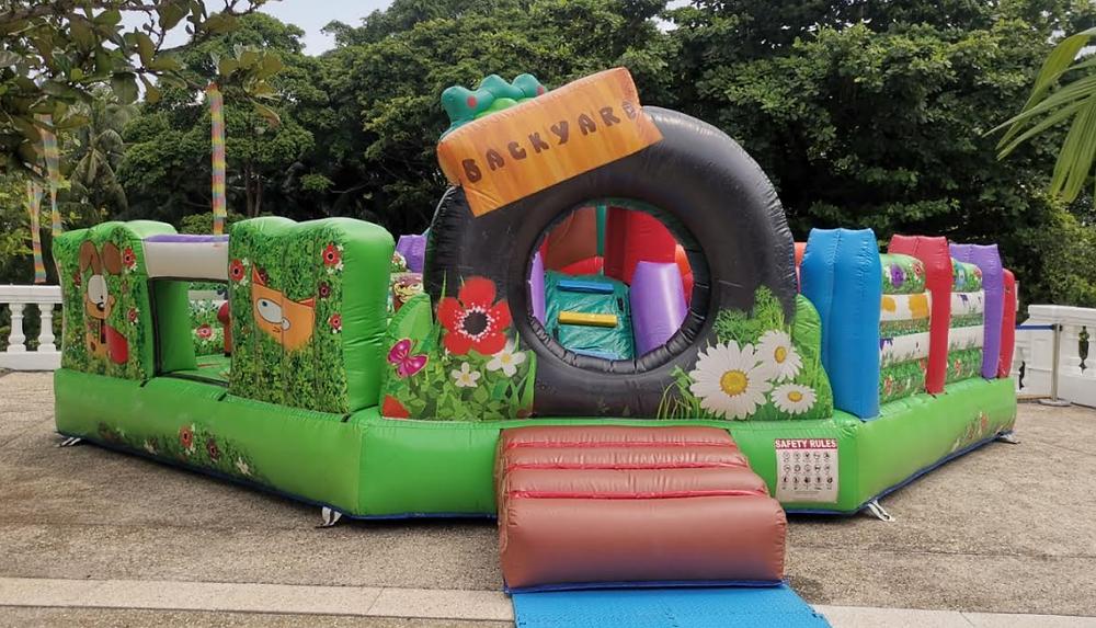 Eye-Catching Bouncy castle