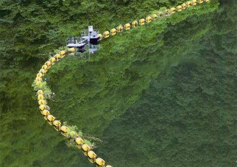 夏の湖面.jpg