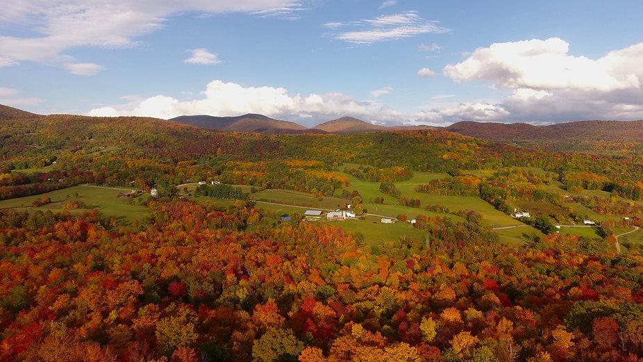 View of Baird Farm