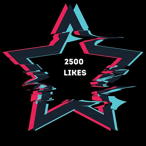 2500 Youtube Likes