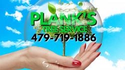 Plank's