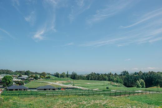 holmes hill estate subdivision