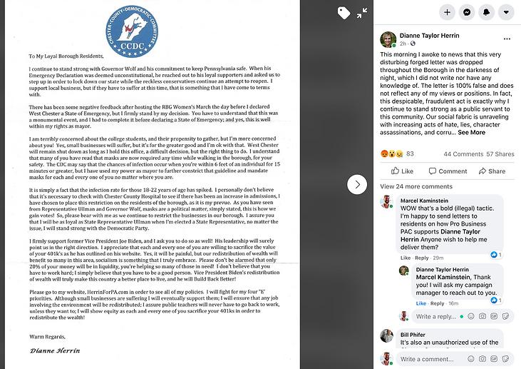 Dianne Herrin Fake News Letter 10-4-20.p