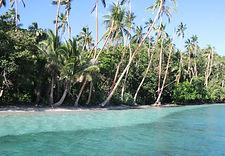 Viani Bay - Dive Academy Fiji