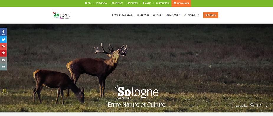 Site Sologne Tourisme, site de destination en Sologne, région Centre-Val de Loire