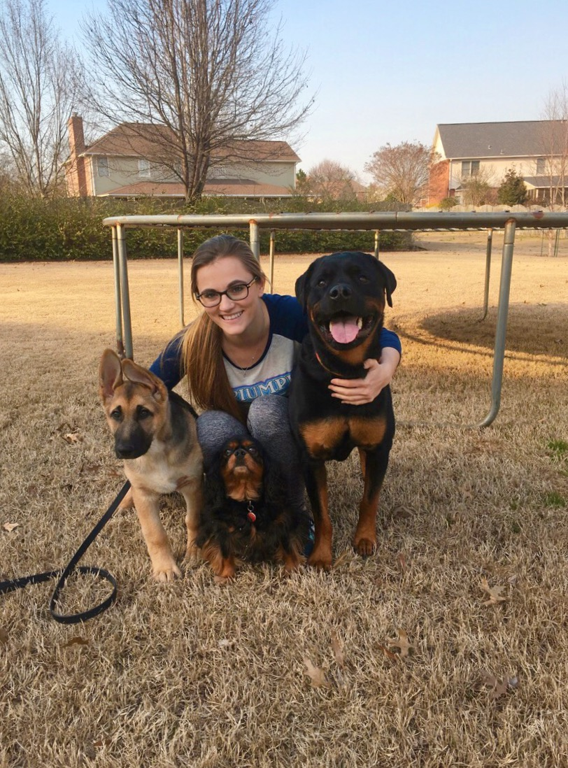 happy-training-client-with-dogs