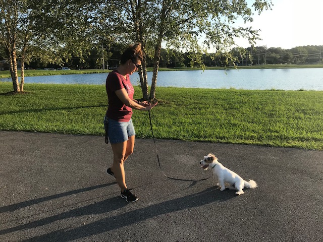kristine-training-with-a-dog