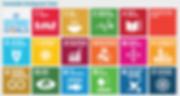 Sustainable Developmet Goals