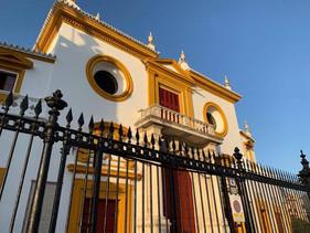 Suspendidos los festejos taurinos anunciados en Sevilla