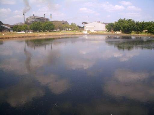 Sugar factory-Colombia
