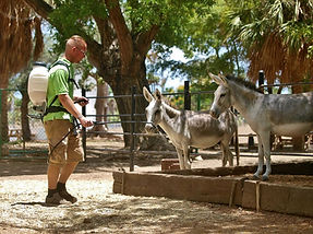 Self Sustainable Zoo Netherlands.jpg