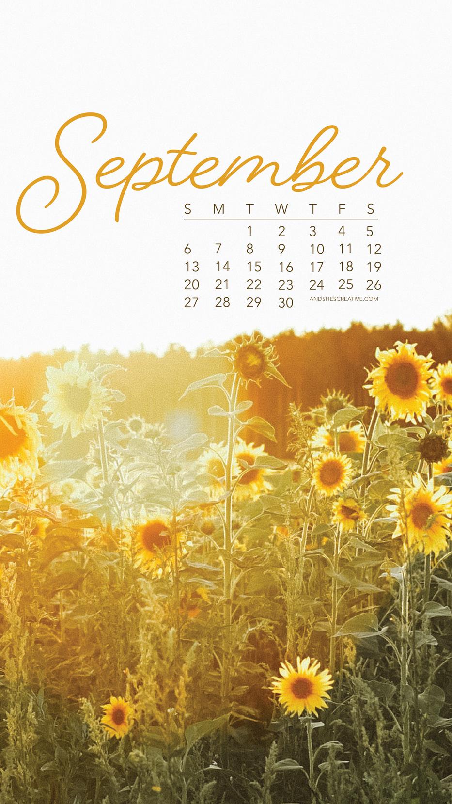 September Sunflower Mobile Background